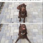 Dog Memes dog-memes-wannawalk-150x150 When your dog had a worse day than you... Dog Memes  ruff day image dog memes