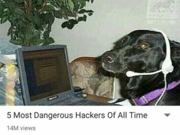 Dog Memes tumblr_oswkkcYsqb1vi3bo0o1_500-360x270 Dog hackers post click bait Dogs  Photo